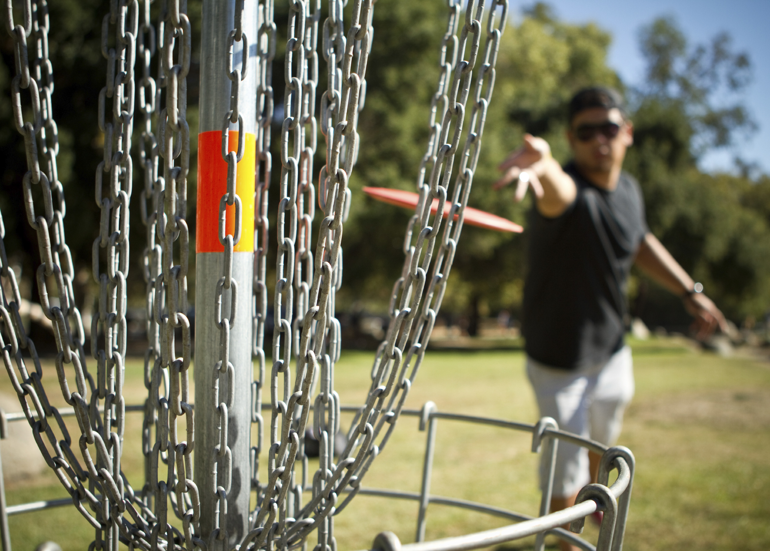 Disc Golf Is Increasingly Popular in Massachusetts